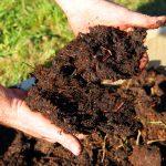 The Basics of Soil Fertility