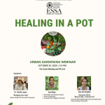 "Iloilo City Cluster was joined by Philippine College of Physician Panay – PCP Western Visayas Panay Cluster held a training on Urban Gardening entitled ""Healing in a Pot"" last October 25, 2020."