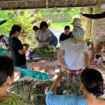 Iloilo City Cluster Organized the Permaculture Training