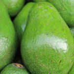 Food Profile: Avocado