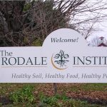 Sustainable Farming Is Superior, proven by Rodale Institute's 30 Year Report