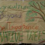 ESSA Negros Cluster Co-Organizes Native Tree Propagation Workshop